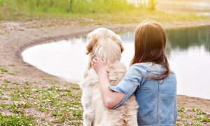 Harris Williams | Three Factors Shaping M&A Strategy in the Global Pet Products Industry
